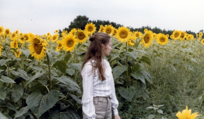 Photograph by my dad, David Ayers, who would brake for sunflowers and bust out his camera